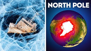 Why Nobody Can Survive in the North Pole