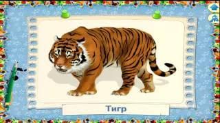 Обучение детей по методу Домана Знакомство с животными Часть 1