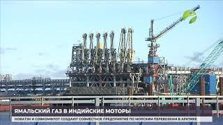 Ямальский газ – в индийские моторы. «НОВАТЭК» займётся поставками СПГ в Индию