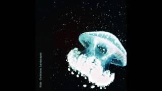 Whisper - Kida (Emotional Lanscapes)