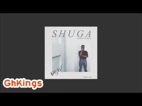 DarkoVibes - Shuga