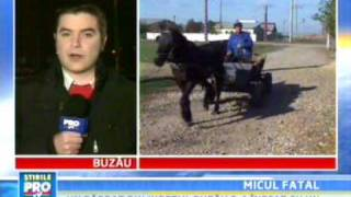 1. psd  soCANTA ROMANIE!!!   CEA MAI TARE REALITATE ROMANEASCA micul fatal pomana electorala PSD