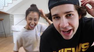 Download David Dobrik's Vlog if he was actually the main character. Mp3 and Videos