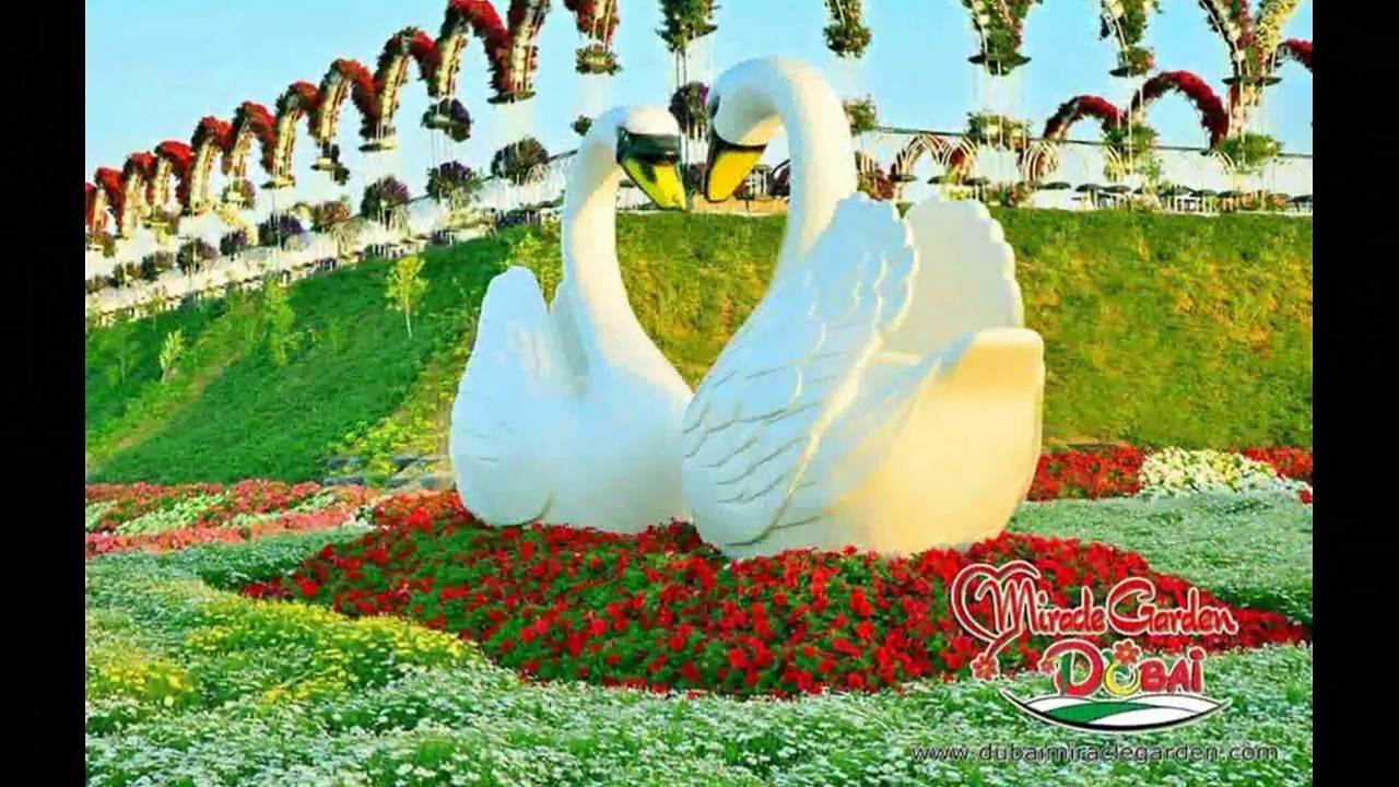 Most Beautiful And Biggest Natural Flower Garden In The