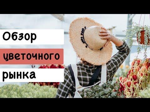 Обзор цветочного рынка в Краснодаре