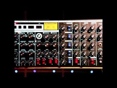 Organ Donors - moogerfoogin (Original Mix)