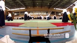 Yamada Sensei Seminar Bernau 2013