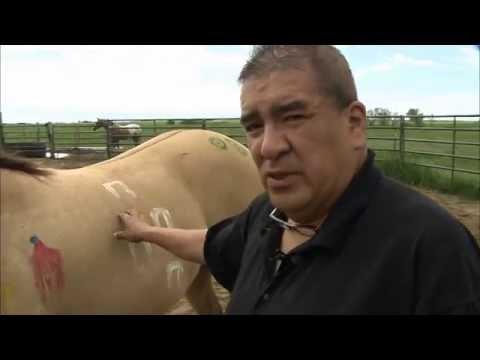 Lakota Horse Symbols