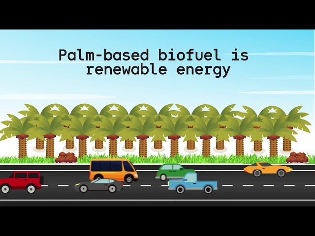 Palm Biodiesel is the future of Malaysia!