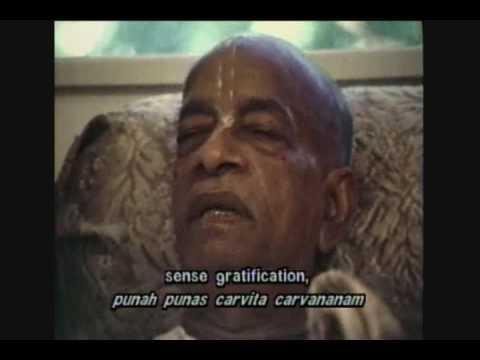 The Acharya Part 3 OF 3