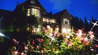 国指定名勝の旧古河庭園(東京都北区西ヶ原)のバラ見ごろが見ごろになり...