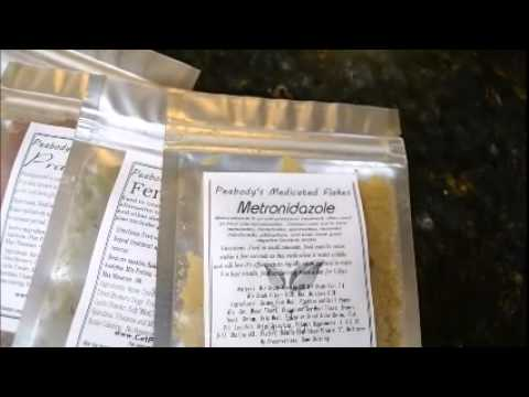 Have Sick Fish?  Medicated Fish Food Is Where It's At!