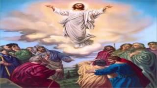Tình Chúa Đưa Con Về | Nhạc Thánh Ca | Những Bài Hát Thánh Ca Hay Nhất