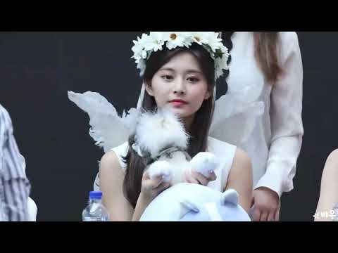 [Fancam] ANGEL TZUYU!!