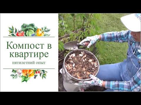 Как приготовить зимой компост для огорода в квартире.Пятилетний опыт.