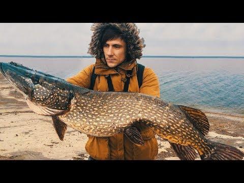 Рыбалка Лучшие моменты. РЫБОЛОВ - ANGLER