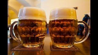 [체코맥주] 프라하 맥주 펍 베스트 4 - 프라하한인민…