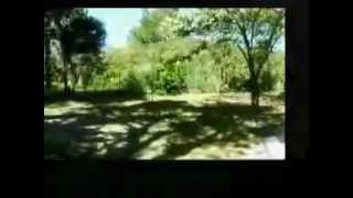 Camping la Griotte ** en mai, à bormes les Mimosas