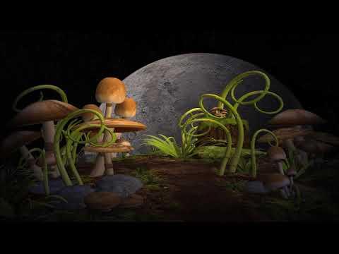 Infected Mushroom - Classical Mushroom