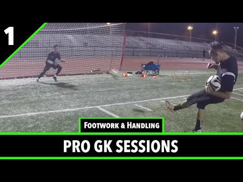 Pro Gk Academy Goalkeeper Training Session - 12/29/16