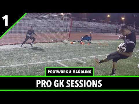 Pro Gk Academy Goalkeeper Training Session - 12/29/16