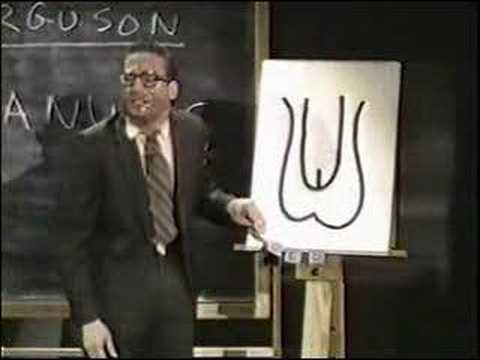 Sex Education with Mr. Ferguson: Human Reproductive System