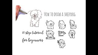 Drawing tutorial - How to draw a sheepdog in 10 steps for beginners