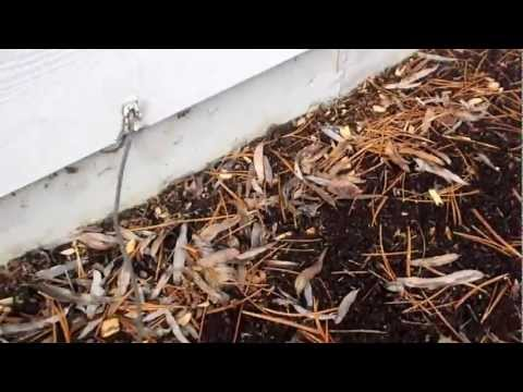Seattle Home Inspection checking grounding cable   | (425) 207-3688 | CALL US!