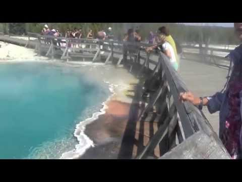 Yellowstone National Park   5 July 2014   Tour   West Thumb Geyser Basin #4