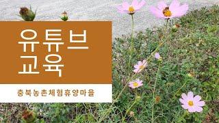 유튜브 활용 홍보교육 충북농촌체험휴양마을 유튜브강사 최…