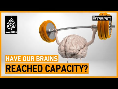 Have our brains reached capacity? | The Stream