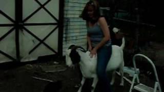 Kristi rides Similac