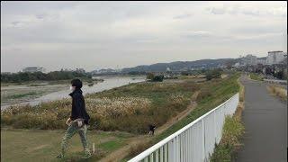 多摩川河川敷を散歩