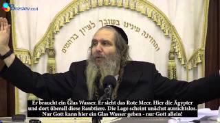 Rabbi Shalom Arush / Ausgangspunkt - EMUNA