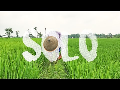 The Green of Solo #5 Travel-Video