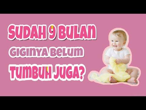 Penyebab Bayi 9 Bulan Belum Tumbuh Gigi Youtube