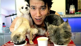 DOG ICE CREAM CHALLENGE!!