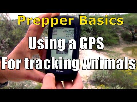 Prepper Basics: Tracking a Animal Using a GPS