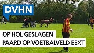 Voetballers in Eext ontwijken op hol geslagen paard