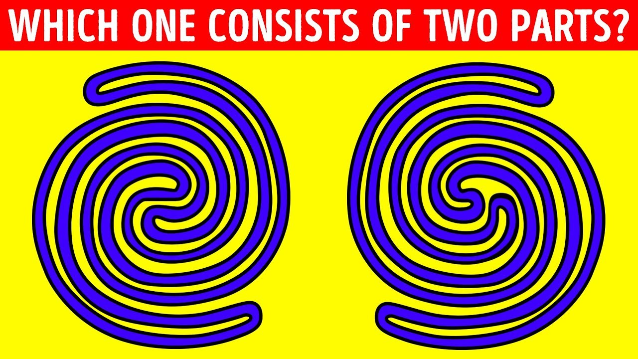 18-riddles-only-people-with-a-phd-can-solve