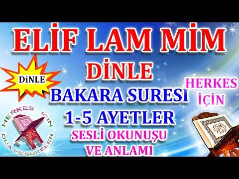 Bakara Suresi 1 - 5 Ayetler Elif lam mim ezberle - Elif Lam Mim Suresi Dinle