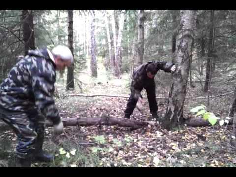 video - 2011-10-02-11-34-27.mp4