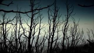 Flёur - Кома (неизданная песня)
