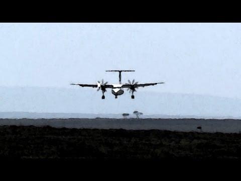 Landing in the Masai Mara (with bonus lions)