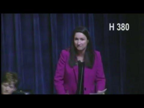 Rep. Ilana Rubel, District 18 Idaho House,  Debating HB380 2/3/2016