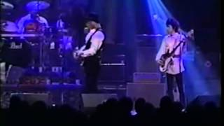 Don't Come Around Here No More - Tom Petty & The Heartbreakers (live in Minneapolis, 1999)
