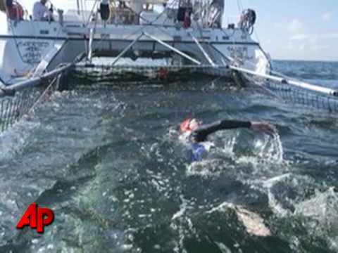 56-Year-Old Becomes 1st Woman to Swim Atlantic