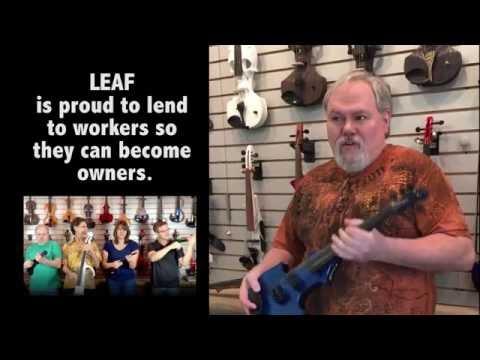 Violin Coop 2