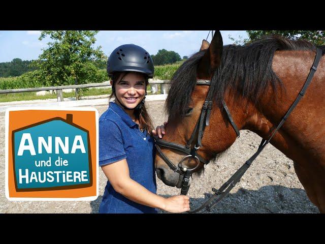 Anna lernt Reiten #2 | Selbst die Zügel in der Hand | Anna und die Haustiere