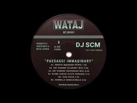 DJ SCM - Ritmo Logico (Flute Version)